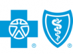 Blue Cross and Blue Shield of Texas, Inc. | Blue Cross Blue Shield logo